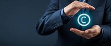 Dia: 17/10 - Disseminando a Propriedade Intelectual - Registro e proteção de marcas no âmbito da prática empresarial